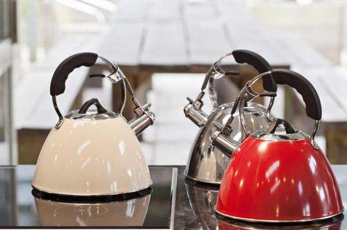 Чайники для индукционной плиты